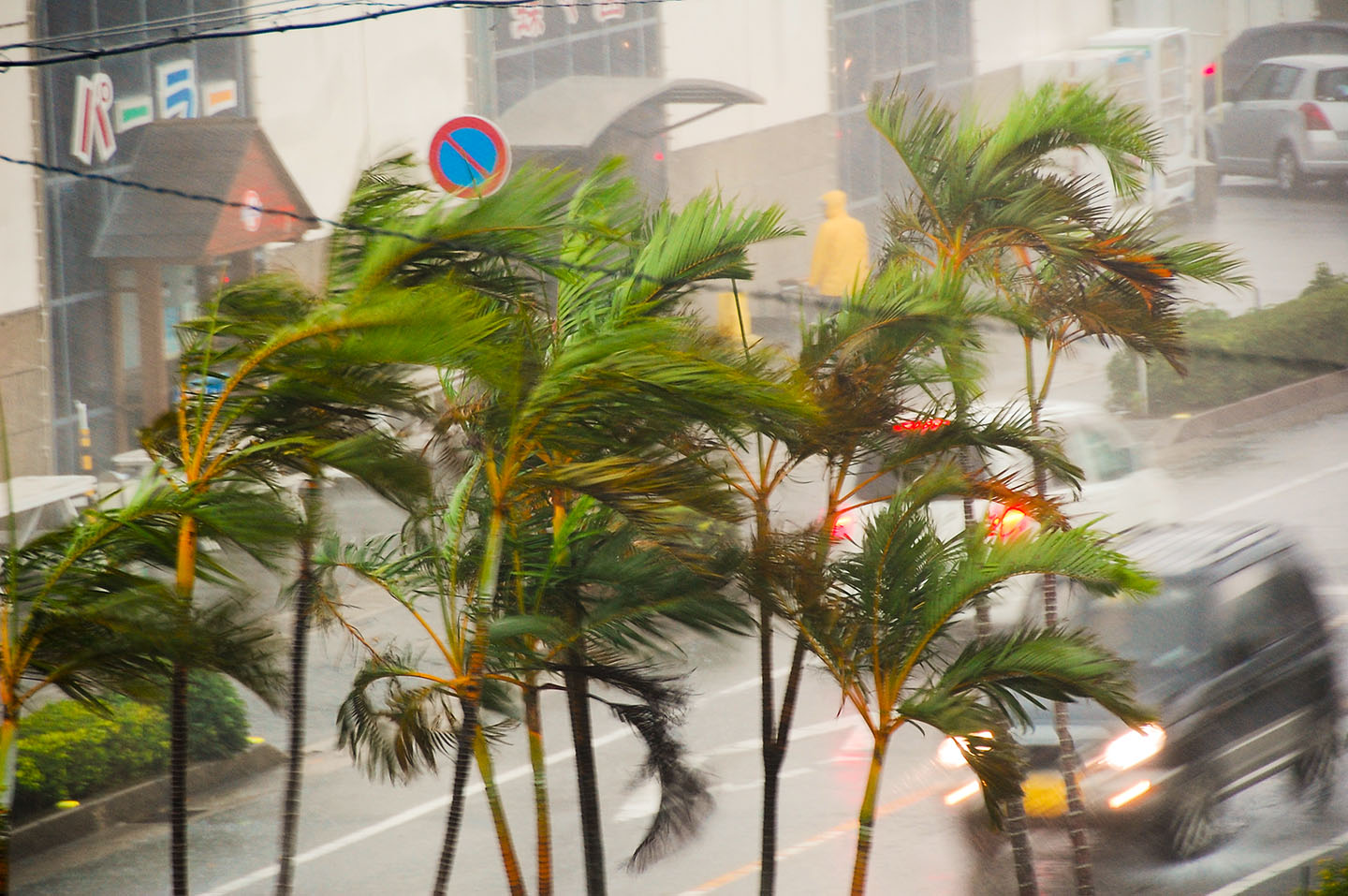 Typhoons in Japan : What you need to know