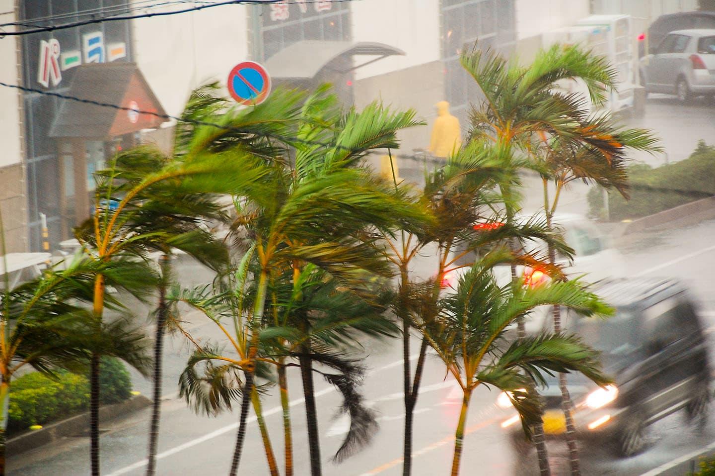일본의 태풍에 관한 기본 가이드 알아두기