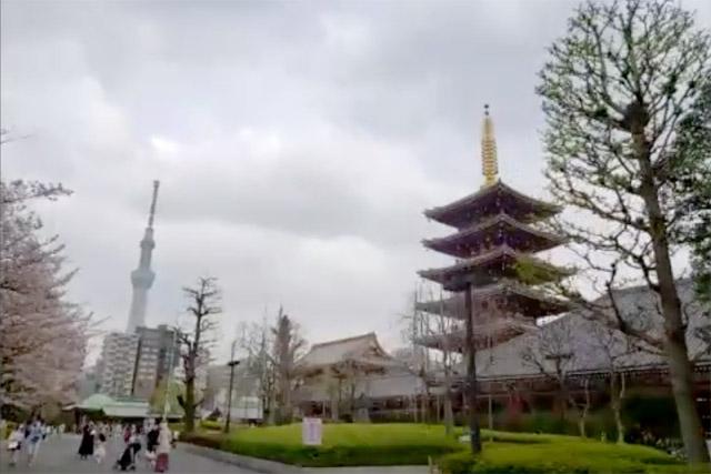 『Tra to La(トラットラ)』 五重塔と東京スカイツリー(R)の見事なツーショット