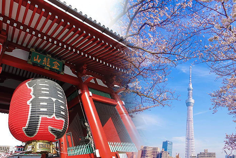 【東京】「東京下町」一日遊!教你一次逛滿淺草、上野、晴空塔、阿美橫町等多處必去景點