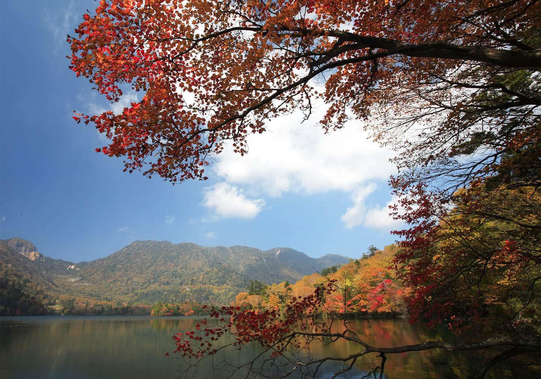 [JR 도쿄 와이드 패스 이용 가이드] 닛코~기누가와 온천까지, 알짜배기 여행 코스 따라가기!