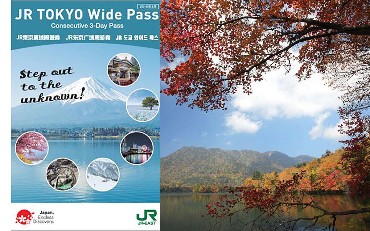 【日光篇】如何用「JR TOKYO Wide PASS」輕鬆玩遍所有景點?推薦路線、行程大公開!