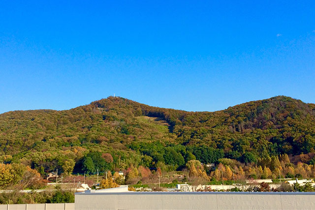 佐野SA下り 三毳山の紅葉