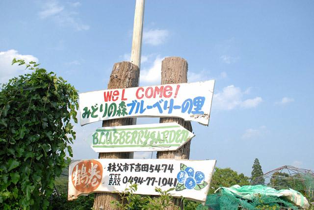【埼玉】 ドライブ女子必見 観光おすすめ14選ー秩父の自然満喫やグルメまで