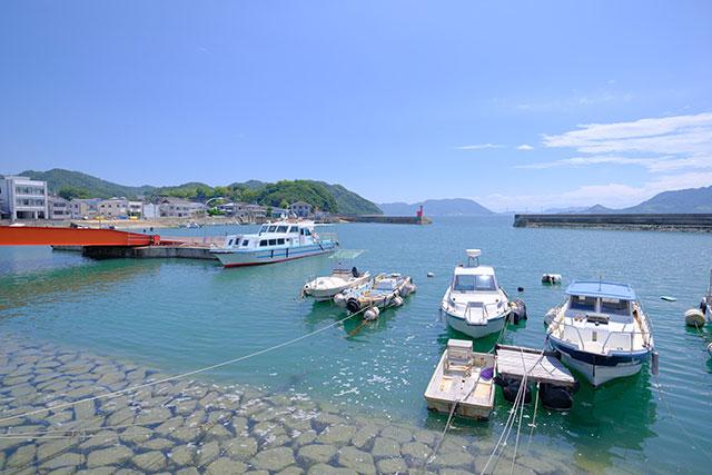 天気のよい瀬戸内海はとってもきれい!