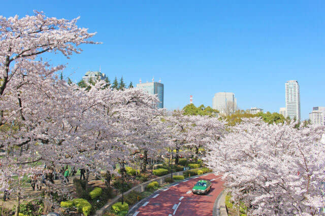 Spring:April to June
