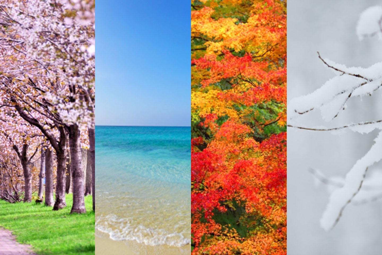 일본의 사계절