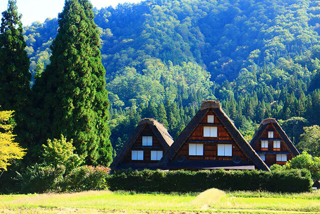 Complete Guide on How to travel to Shirakawago from Tokyo, Osaka, Nagoya and Kanazawa
