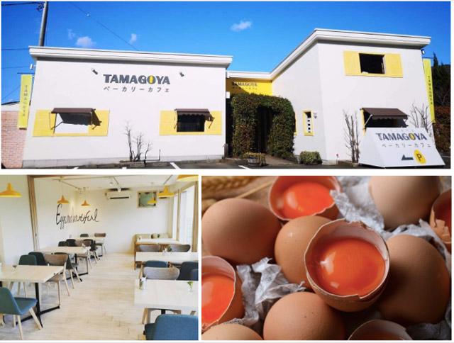 TAMAGOYA 店舗イメージ