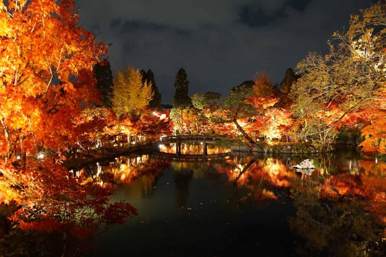 【2020年】京都・秋の紅葉名所42選!コロナ・穴場・ライトアップ情報