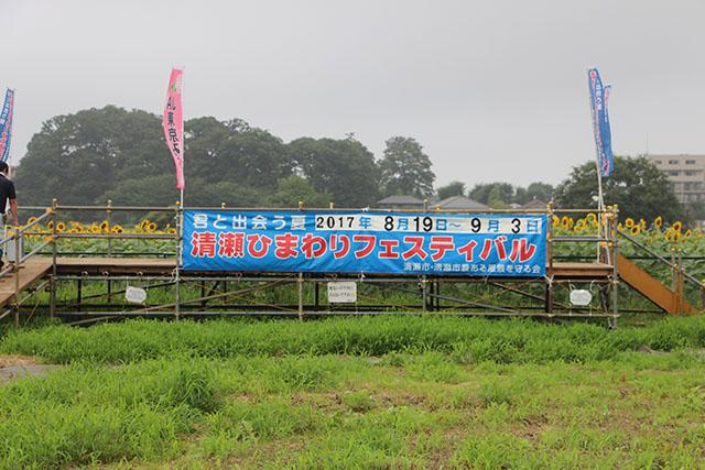 清瀬ひまわりフェスティバル会場