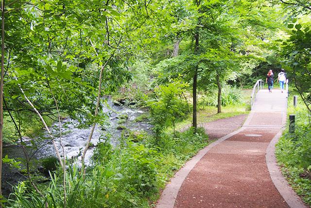 心がウキウキするような、きれいな遊歩道