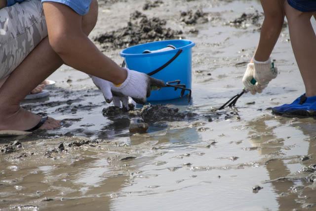 潮干狩りとしても有名な海岸です