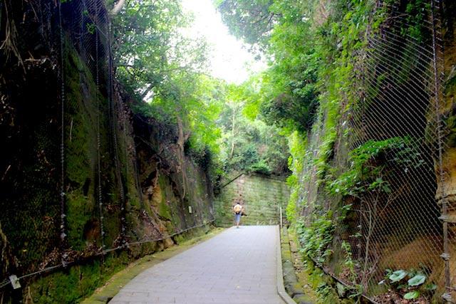 苔生す緑の岩壁が神秘的な雰囲気