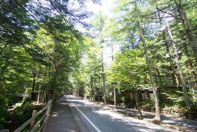 木漏れ日が気持ちいい軽井沢をサイクリング