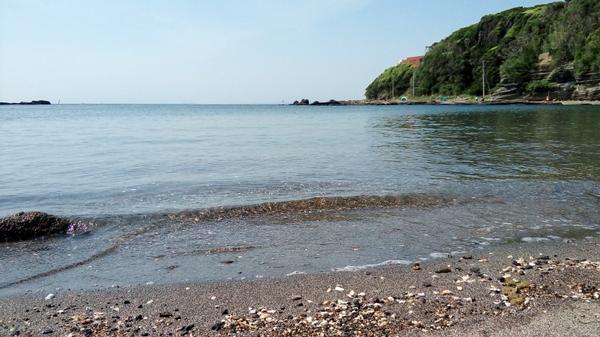 神奈川県・三浦にある「荒井浜海水浴場」