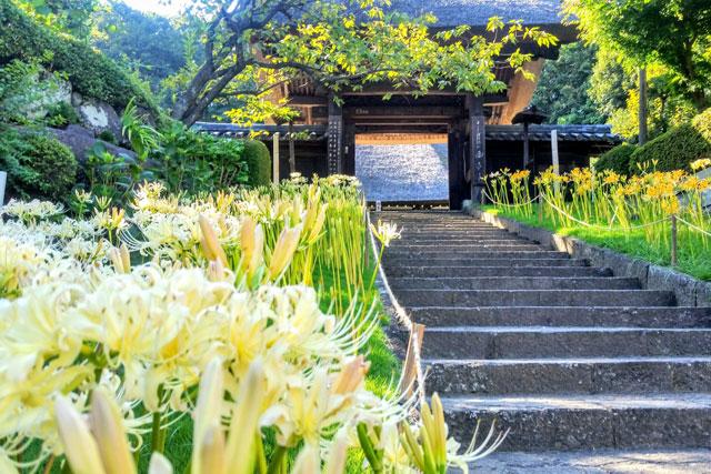 西方寺 茅葺の山門前は絶景