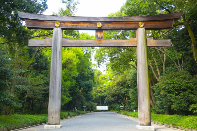 明治神宮 日本一の大鳥居
