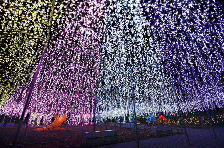 【関東】冬の絶景!2020年イルミネーションおすすめ14選|開催期間・アクセス