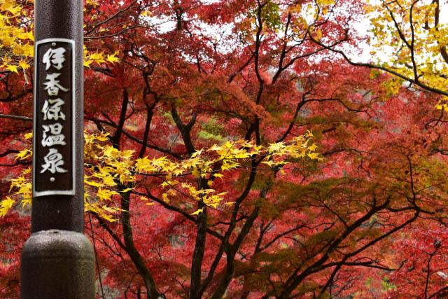 伊香保温泉 秋の紅葉