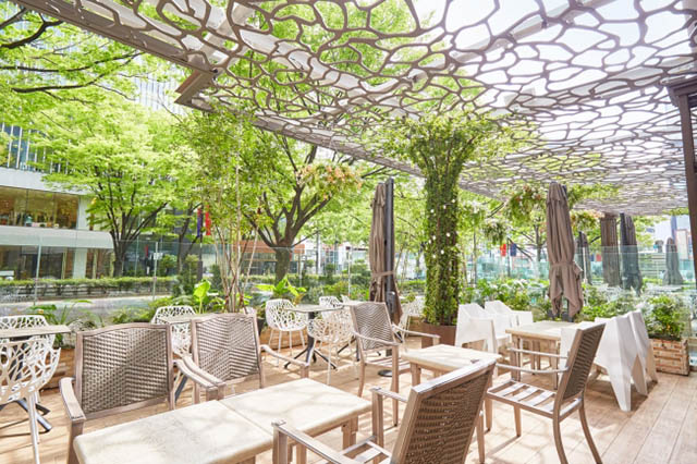 Cafe & Dining ZelkovA(ゼルコヴァ) 景色の良いテラス席