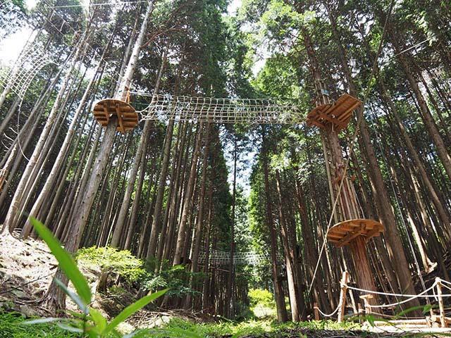 冒険の森 in のせ