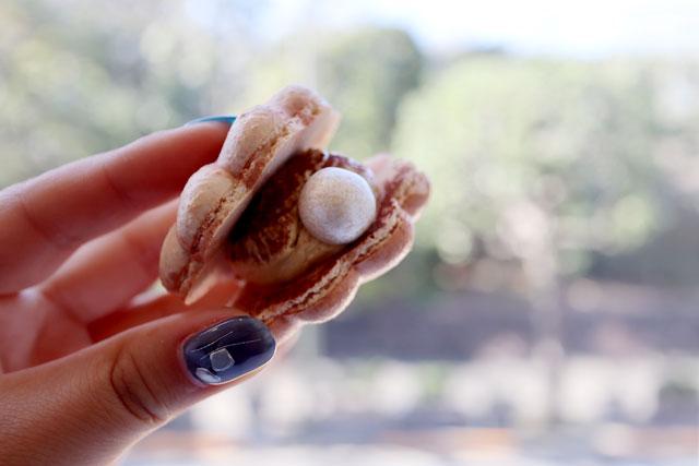 DOTORI 貝殻の形がキュート