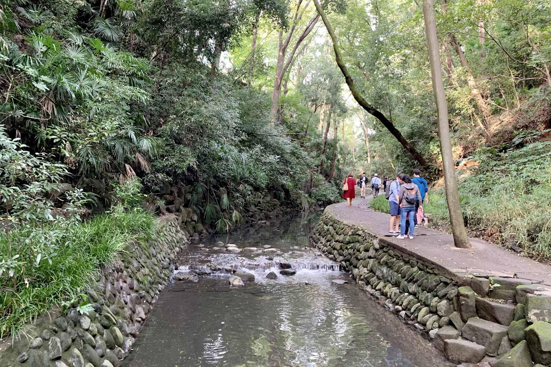 【東京】都内23区で「森林浴」を楽しもう!リフレッシュできる定番&穴場スポット8選