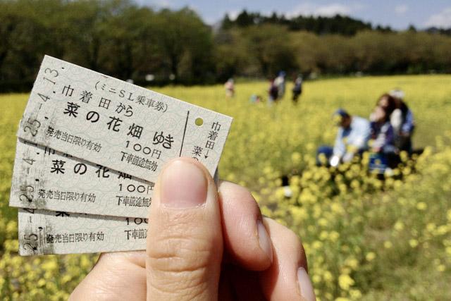 巾着田 菜の花畑を走るミニSL列車