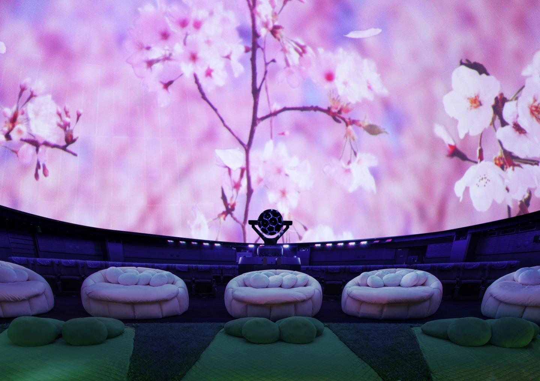 【東京】桜開花!2021年春に行きたいお花見イベント&スポット〈3月・4月・5月〉