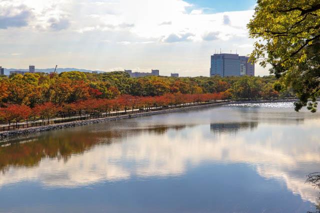 「大阪城公園」