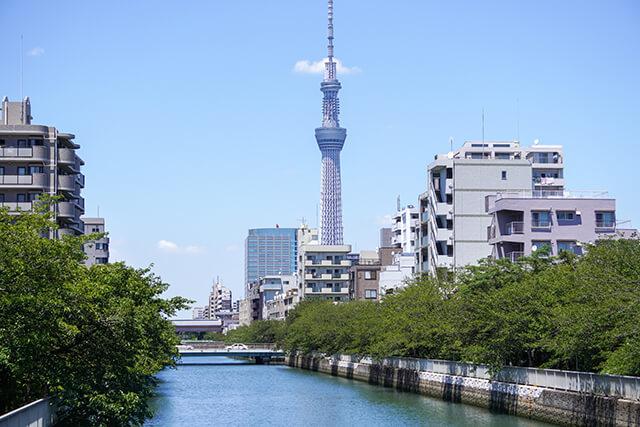猿江橋の架かる大横川には桜並木が
