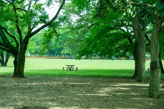 「小金井公園」