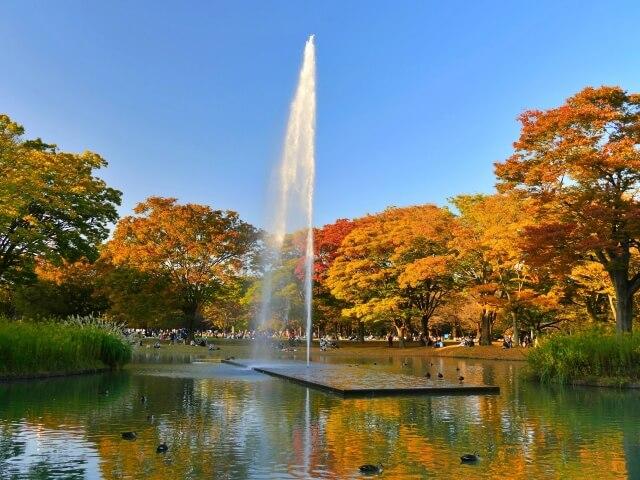 「代々木公園」噴水