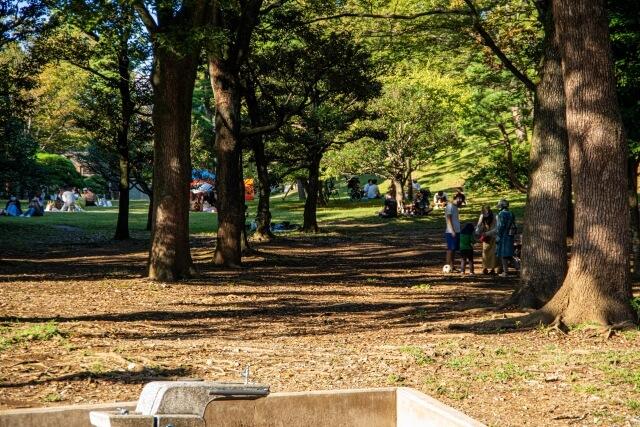 「代々木公園」