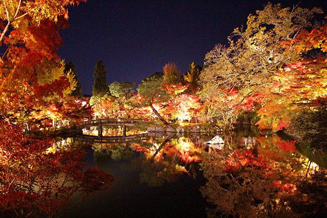 2020年【京都】賞楓品秋的最佳觀賞景點&擁擠程度、平均停留時間統整