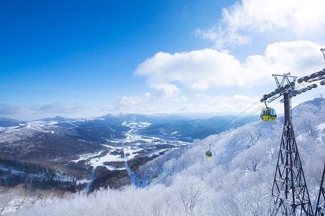토마무 스키장