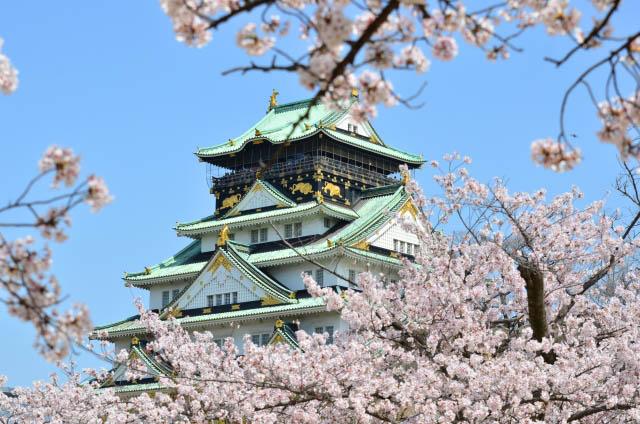 오사카의 벚꽃구경 나들이 명소 2021 특선!