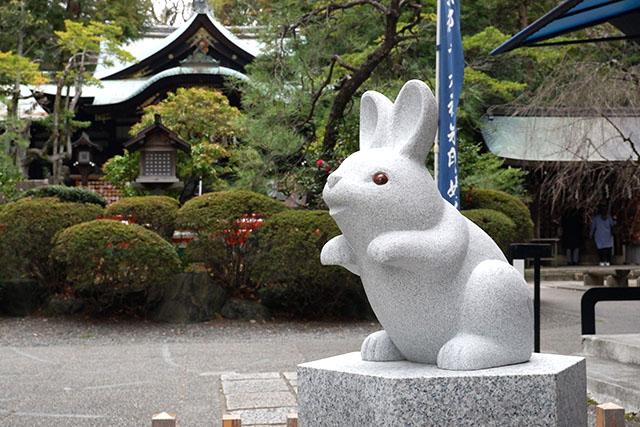 Rabbit at the shrine