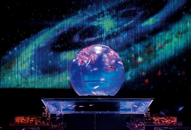 「Earth Aquarium Japan」