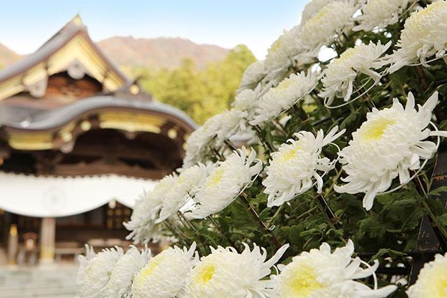 彌彥神社紅葉谷