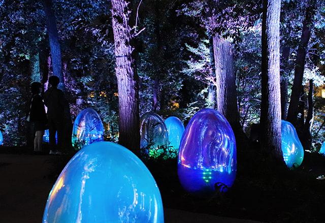 야외 전시 이벤트-도토리 숲의 호응하는 생명(by 팀랩)