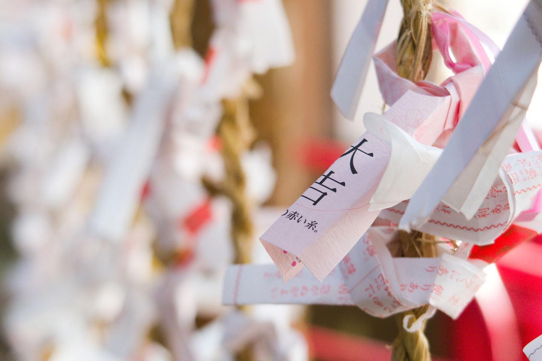 [2021] 도쿄 첫 참배, '하츠모데' 신사 10선!