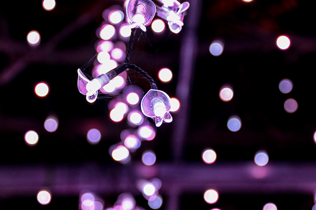 LED lights somewhat in the shape of a flower replicating the petals of wisteria