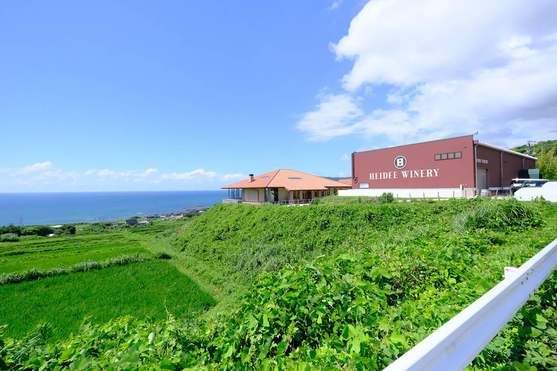 Heidee Winery: Brewing Sea Wine in Noto Peninsula