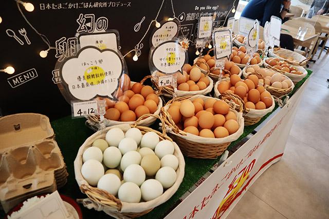 6개들이 계란팩-800엔