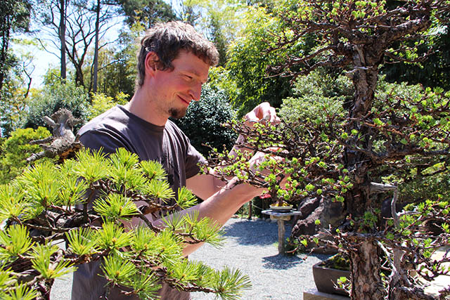 Adam Jones, the founder and owner of Tree House Bonsai