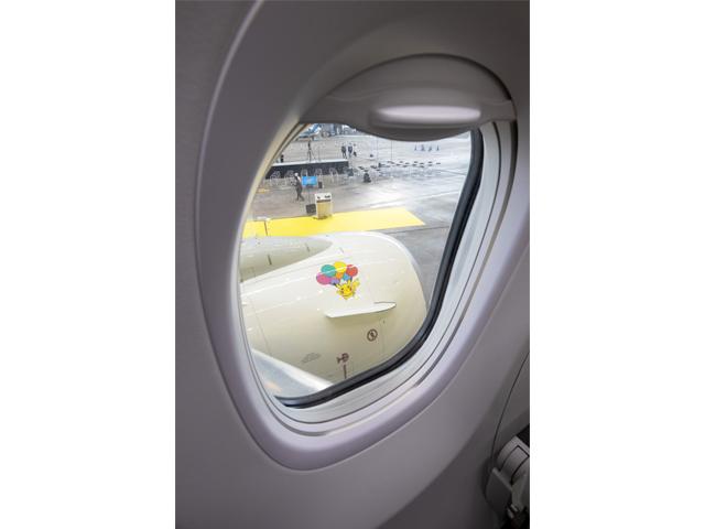 圖片來源:日本天馬航空(Skymark Airlines)