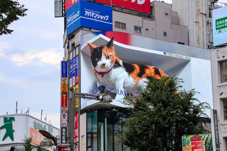Meow! Giant 3D Cat In Shinjuku
