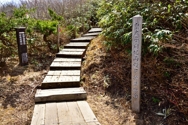 First part of the trail is an easy hike up on the wooden path